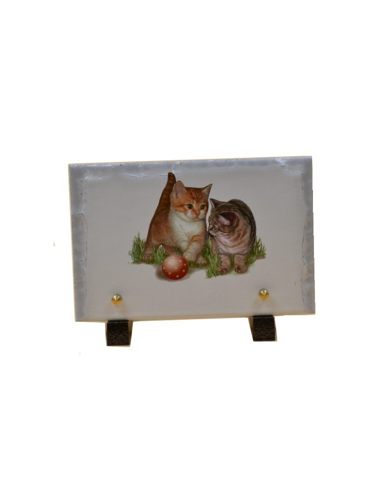 plaque funéraire chatons chat animaux